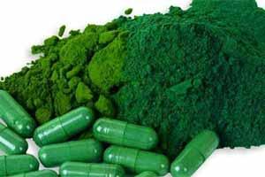 Alga espirulina para adelgazar