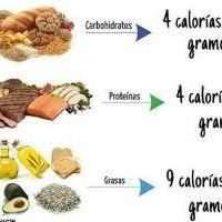 Calorías de los alimentos más consumidos